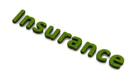 conceptual word insurance covered of grass isolated on white background
