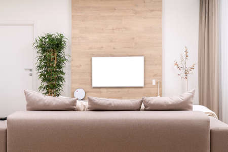 Modern minimalistic luxury apartment with couch, pillows and blank flat-screen lcd TV on the wooden wall, vase and plant