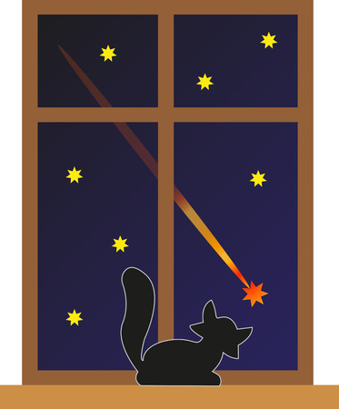 Cat watching a falling star.