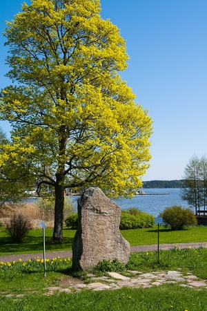 Rune Stone, standing near the entrance to the castle Gripsholm in Marifrede.