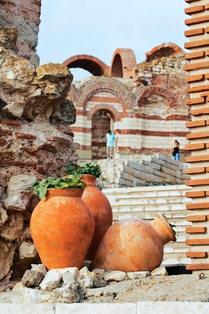 Large pitchers with the plants against the remnants of the ancient church