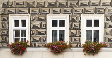 Three windows with flowers, painted the wall of an old house in Krakow Stock Photo - 12090851