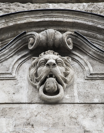 Bas-relief on the wall of a building in the ideal head of a lion photo