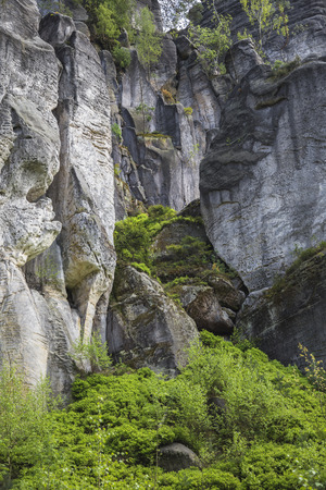 cleft: Scarps and Cleft in the rock with growing trees in the vertical and moss, grass
