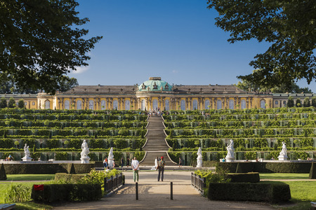 Sanssouci Palace and vine terraces in front of him. Potsdam. Germany