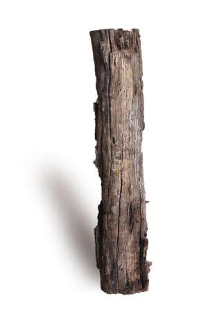 xwhite: log wood isolated on white background Stock Photo