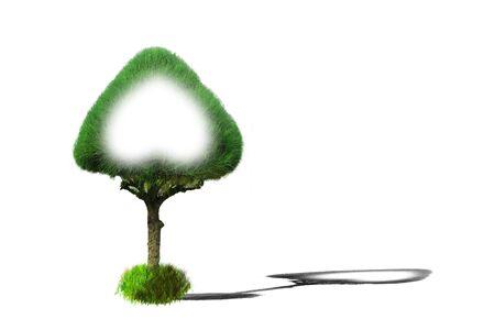 solid figure: Pino albero cuore verde piante ornamentali isolato