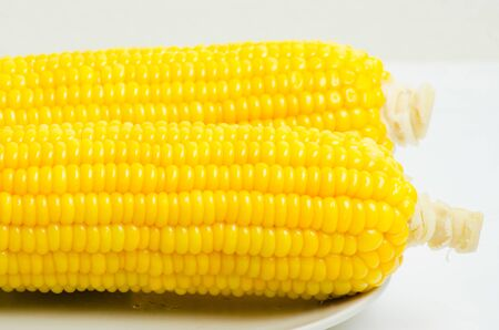 corn background, Macro closeup for design work photo