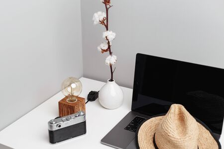 A vase of cotton flowers, old-fashioned camera, a straw hat and a notebook