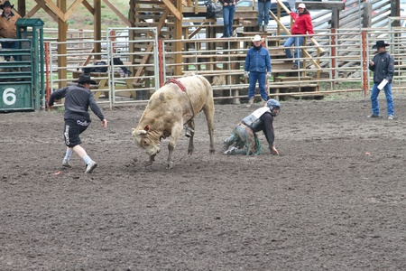 MERRITT; B.C. CANADA - MAY 15: Bull Riding event at Nicola Valley Rodeo May 15; 2011 in Merritt British Columbia; Canada