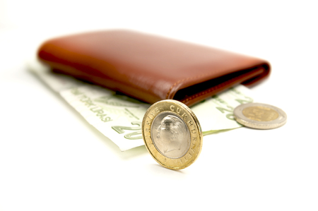 Leather wallet and Turkish lira