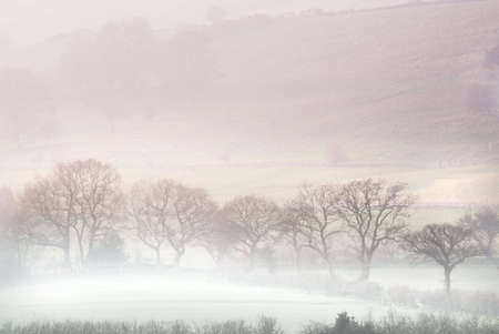 Misty morning in Yorkshire Dales Stock Photo