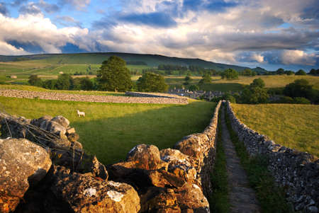 dales: Footpath in Wharfedale, Yorkshire Dales National Park, United Kingdom
