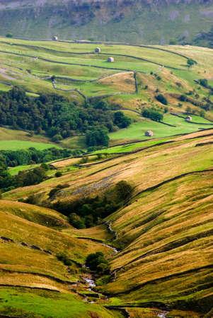 wensleydale: Paredes y graneros en Swaledale, Yorkshire Dales National Park, North Yorksire, Reino Unido