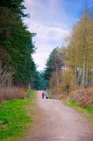 A couple walking along a lane through a forest  Stock Photo