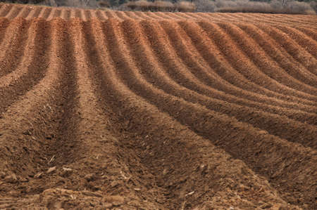 ploughed: Newly ploughed field ready for new crops Stock Photo
