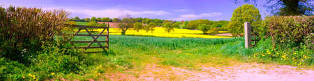 English countryside in panorama