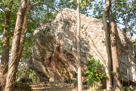 Stone Rock Cliff Mountain Hill or Pha Ngerp Phayao Attractions Northern Thailand Travel Right. Natural rock cliff mountain hill with warm sun light and tree. Phayao attractions or landmark northern Thailand travel