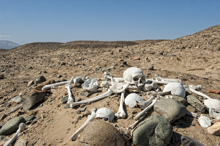 openly: Inka cemetery with openly laying bones and scull