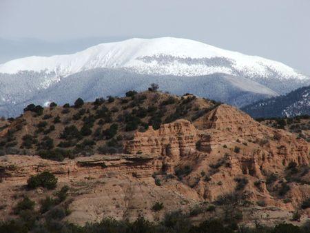 rocky mountain juniper: Adobe Winter Stock Photo