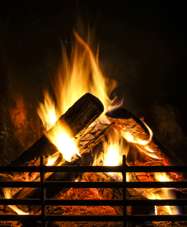 fireplace: flame in fireplace