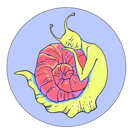 in somnolence: illustration of a sleepy snail