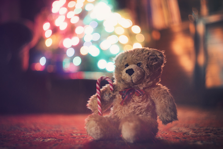light room: Teddy bear before the glowing christmas tree Stock Photo