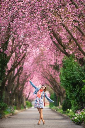 일본 벚꽃 꽃에서 터널 아래 서있는 젊은 여자 스톡 콘텐츠