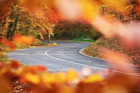 Mountain Road trough autumn forest Stock Photo