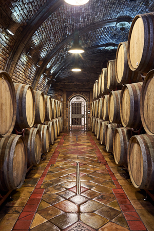 Old, big wine cellar Standard-Bild