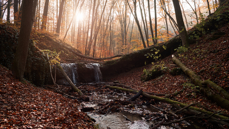 Small waterfall in the autumn forest