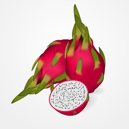 Whole Exotic Dragon Fruit with slices on grey background. Vector illustration.