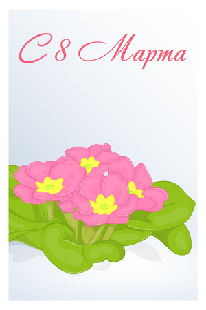 Beautiful congratulation or greeting card for womens day with Primula in snow. Russian translation: 8 March. Holiday greetings background in simple cartoon style. Vector illustration. Flower Collection.