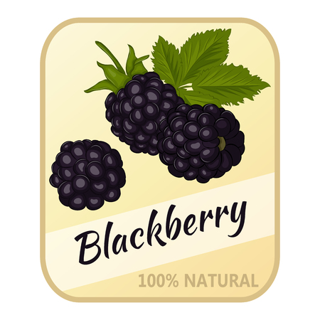 Vintage label with blackberry isolated on white background in cartoon style. Vector illustration. Berries Collection.