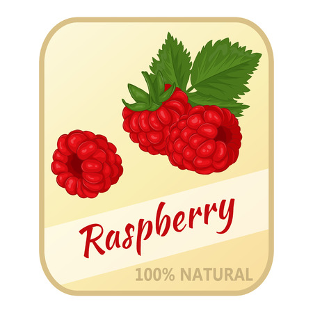 Vintage label with raspberry isolated on white background in cartoon style. Vector illustration. Berries Collection. Illustration