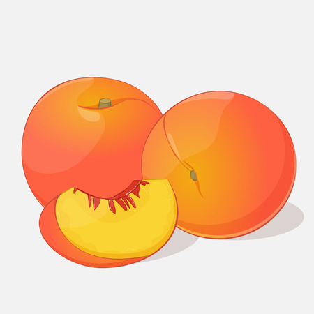 Bright juicy peach on grey background. Sweet delicious for your design in cartoon style. Vector illustration. Fruit Collection.