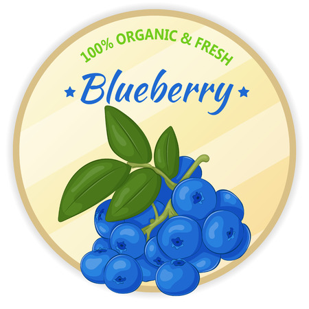 Vintage label with blueberry isolated on white background in cartoon style. Vector illustration. Fruit and Vegetables Collection. Illustration