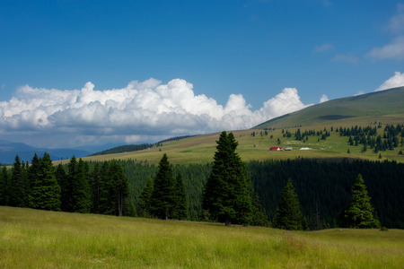 carpathian mountains: A beautiful lanscape in the Carpathian Mountains (Romania)