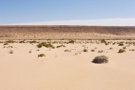 desierto del sahara: El desierto del Sahara en el Sahara Occidental