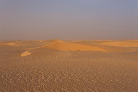 desierto del sahara: The Sahara desert in Mauritania Foto de archivo