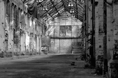 abandoned warehouse: Abandoned warehouse with a cat