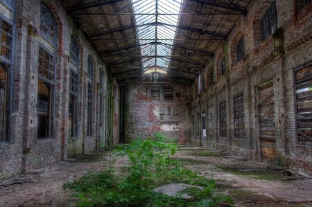 Abandoned warehouse with plants