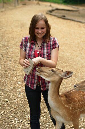 森の中の鹿を供給若い女性