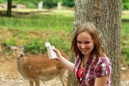 若い鹿が若い女性のペットを持ちたいです。