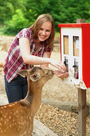 鹿が自販機から生鮮食品を食べる
