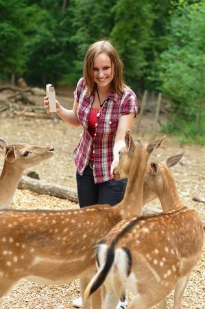 公園で鹿を供給若い女性