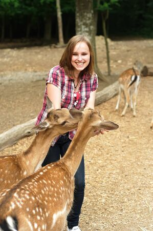 女性が鹿によって脅かされています。