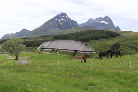 Bostad / Norway - June 21 2019: At Borg in Lofoten, the largest longhouse in the world of the Vikings has been found - and reconstructed