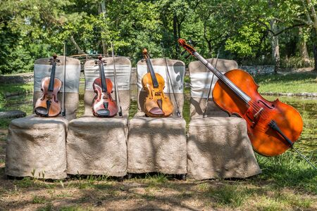 Music and nature concept. String instruments, one cello and three violins on the ceremonial chairs in nature, in front of forest wooden bridge.