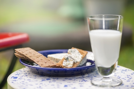 Blue cheese with a glass of milk and hard bread Stock Photo - 15325316